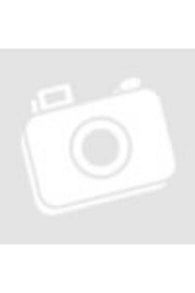 Original faceplate case KARL LAGERFELD KLHCI61ROGO iPhone XR black gold